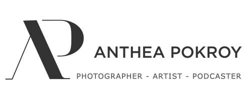 Anthea Pokroy Art Logo